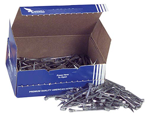 Nordic Forge Incorporated Size 6 City Head Nails, Box of 250 by Nordic Forge Incorporated