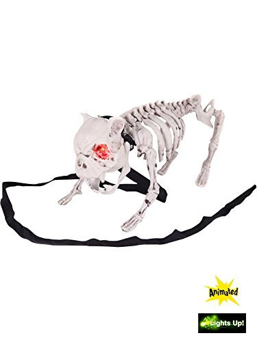 BARKING DOG SKELETON -