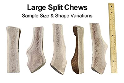 Elkhorn Premium Chews Large, Split, Single Pack Grade A Premium Elk Antler Chew for 30+ lb Dogs – Naturally shed from Wild elk – No Mess, No Odor – Made in The USA from Elkhorn Premium Chews