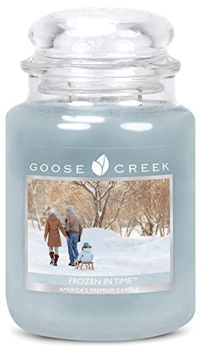 Goose Creek Scented Candles Frozen In Time Large Jar Cand...