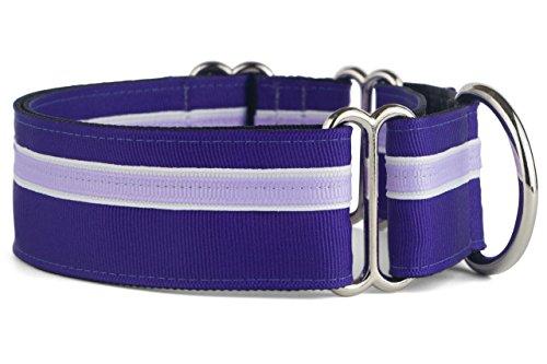 Stripe Martingale Dog Collar - If It Barks - 1.5