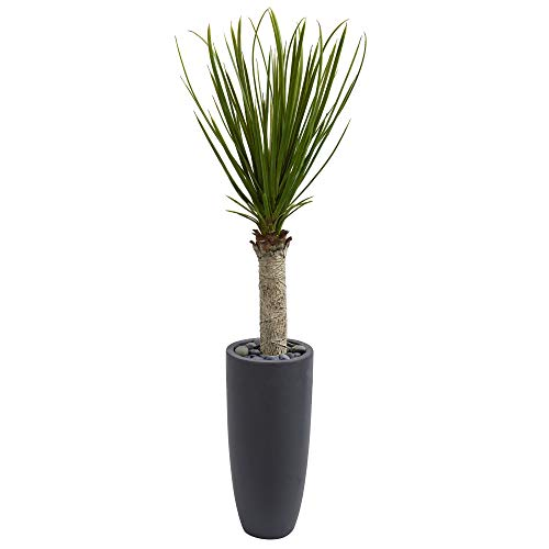 MISC Green Yucca Plant Indoor Palmtree in Planter Tropical 4-Foot Silk Plant Floral Asparagaceae Botanical Palm Tree Nature Oasis Cottage Brown Grey Black, Polyester ()