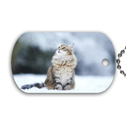 Moonlight Idea Snow Dog Lake Color23 Great Gift Tag Scenic with Necklace Chain Nature ttZwOS