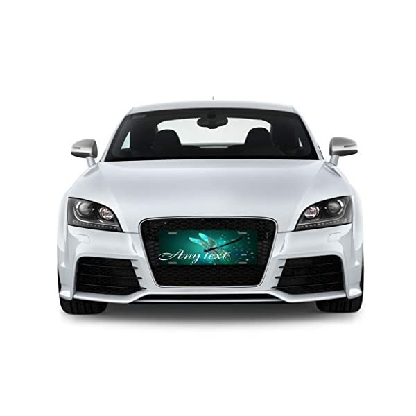 License-Plate-Cover-Decorative-Car