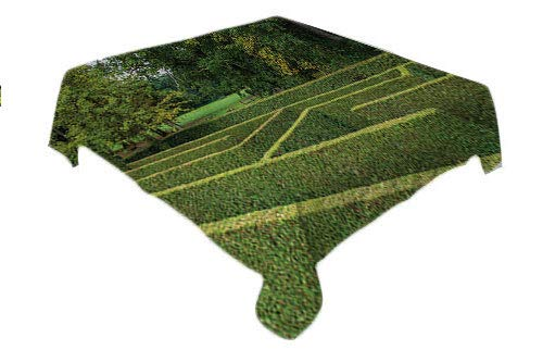 Boxwood Hedge Picnic Cloth Natural La rinth Maze in Majestic Formal Castle Garden Overcast Weather Multicolor Dinning Tabletop Decoration Rectangle Tablecloth 60 by 84 inch
