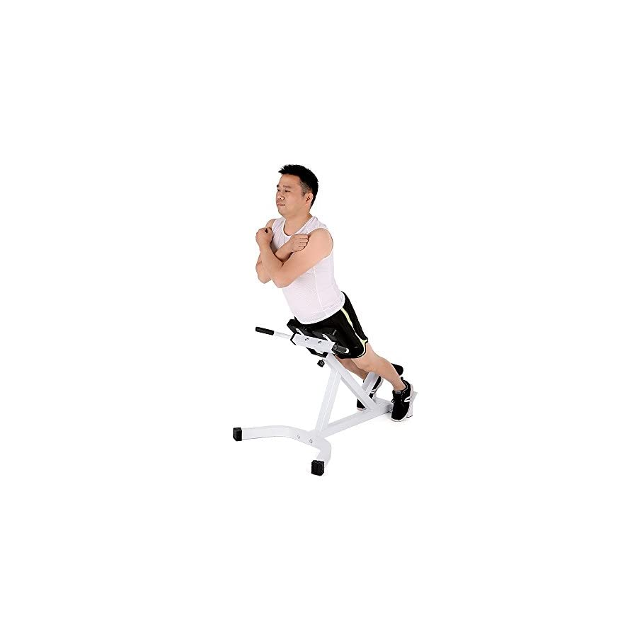 TOMSHOO Adjustable Hyperextension Roman Chair, Multi Workout Abdominal Back Extension Exercise AB Bench Home Gym Fitness, Max Weight Capacity 440 lb.