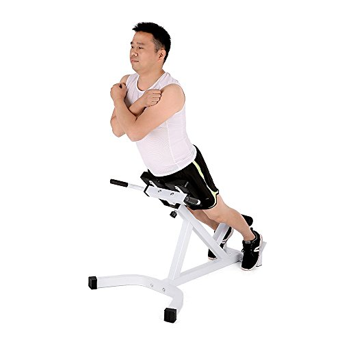 Tomshoo Adjustable Hyperextension Roman Chair Multi Workout Abdominal Back Extension Exercise Ab Bench Home Gym