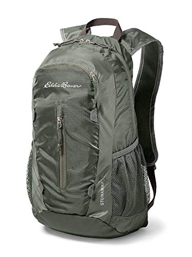 (Eddie Bauer Unisex-Adult Stowaway Packable 20L Daypack, Capers Regular ONE Size)
