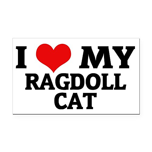 CafePress - Ragdoll CAT Rectangle Car Magnet - Rectangle Car Magnet, Magnetic Bumper -