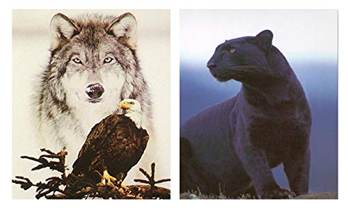 Wildlife Animal Wall Decor Black Panther Big Cat Pictures Two Set 24x36 American Bald Eagle Art Print Gray Wolf Posters