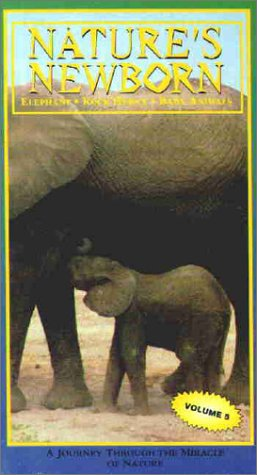 Nature's Newborn: Elephant - Rock Hyrax - Baby Animals [VHS]