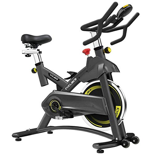 Indoor Exercize Bike Stationary Cycling Bike - Cardio Bike with Monitor and Phone Holder for Home Exercise (Black) (Black)
