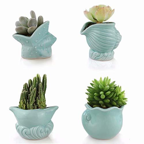 Seashell Succulent Pots 4pcs,Ceramic Planters of Sea Theme with Drainage Hole Cactus/Flower Plant Pots Perfect for Home Office Decor