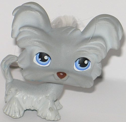 - Littlest Pet Shop Yorkie Yorkshire Terrier Puppy Dog # 227 Shih Tzu (Grey With Blue Eyes And A Brown Nose, Standing) - LPS Loose Figures - Replacement Pets - LPS Collector Toy (Out Of Package/OOP)