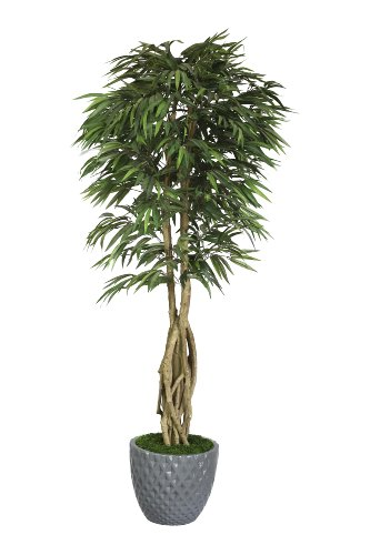Laura Ashley VHX109212 84-Inch Willow Ficus with Multiple Trunks in 16-Inch Fiber Stone Planter
