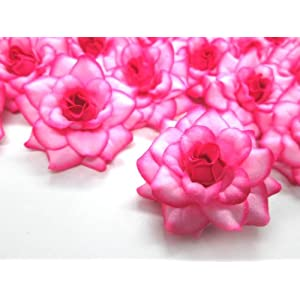 "(24) Silk Hot Pink Edge Roses Flower Head - 1.75"" - Artificial Flowers Heads Fabric Floral Supplies Wholesale Lot for Wedding Flowers Accessories Make Bridal Hair Clips Headbands Dress 1"