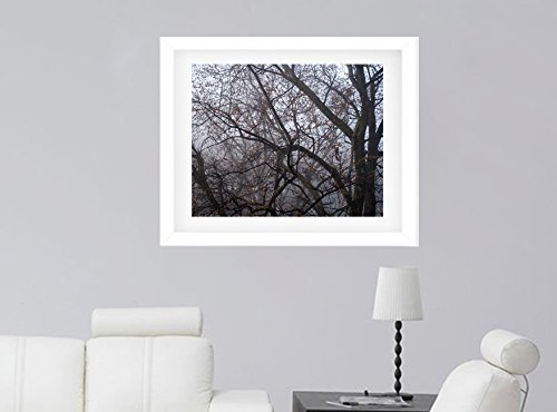 Forest Photography, Trees in the Fog Art Print, Woodland Picture, Nature Photography, Winter Trees Wall Decor from 5x7 to 24x30, Grey Black Minimalist Art