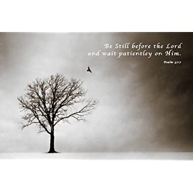 Psalm Inspirational Motivational Religious Decorative Art Poster Print 16 by 20
