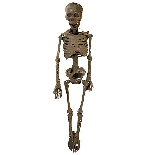 Halloween Haunters 4 Foot Hanging Full Body Skeleton Mummy Plastic Prop Decoration - Posable Joints, Human Bones, Scary Skull (Plastic Halloween Skeleton)