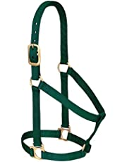 Weaver Leather 35-7404-TU Basic Non-Adjustable Halter, 1-Inch Small Horse, Turquoise