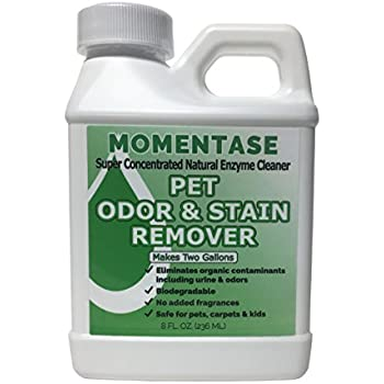 Amazon Com Momentase Natural Enzyme Concentrated Cleaner