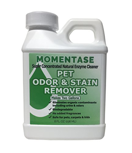 Dog Soil Urine (Momentase Natural Enzyme Concentrated Cleaner High Strength Pet Odor & Stain Remover Non-Toxic Makes 2 Gallons of Solution For Dog & Cat Urine, Feces, Vomit, Organic Soils)