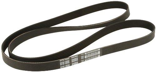 Dayco Drive Belt Multi-Rib Belt
