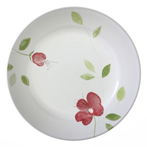 Corelle Lifestyles Garden Paradise 8.5 -Inch Lunch Plates - Set of 6 by CORELLE (Garden Paradise Corelle compare prices)
