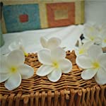 Natural-Real-Touch-Artificial-Not-Silk-White-Yellow-Frangipani-Flower-Heads-for-Cake-Decoration-and-Wedding-Bouquets