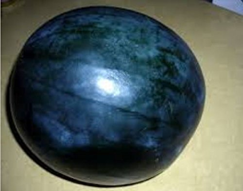 Black Diamond Watermelon, Rare Seeds ~ one of the sweetest watermelons, all black heirloom seeded -