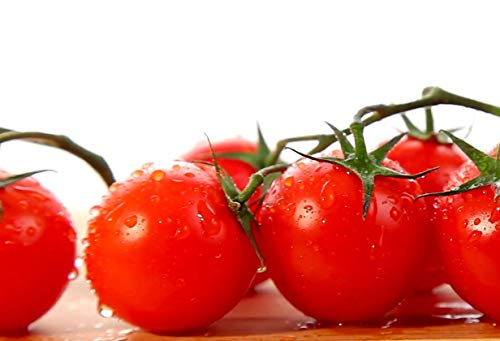 Red Cherry Tomato Seeds, 500+ Premium Heirloom Seeds, Small and Delicious! Fantastic addition to your home garden!, (Isla's Garden Seeds), Non Gmo, 90%+ Germination Rates, Highest Quality, 100% Pure