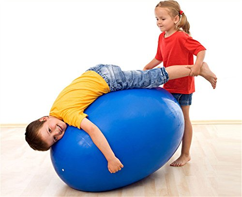 Anti Burst&Slip Resistant Yoga Fitness Ball,Exeicise Ball,Blacnse Ball With Pump