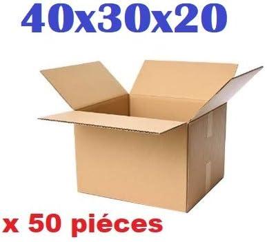 Lote de cajas de cartón para envíos o mudanzas, 40 x 30 x 20 cm, fabricado en Francia, color marrón: Amazon.es: Oficina y papelería