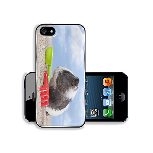 Luxlady Premium Samsung Galaxy S5 Aluminium Snap Case guinea pig playing in the sand with a rake and shovel of colors the sky IMAGE 20271053