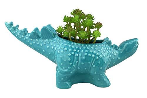Blue Ceramic Bonsai Pot - VanEnjoy 12 inches Cute Cartoon Dinosaur Ceramic Succulent Planter, Water Culture Hydroponics Bonsai Cactus Flower Pot,Air Plant Vase Holder Desktop Decorative Organizer (Stegosaurus, Blue)