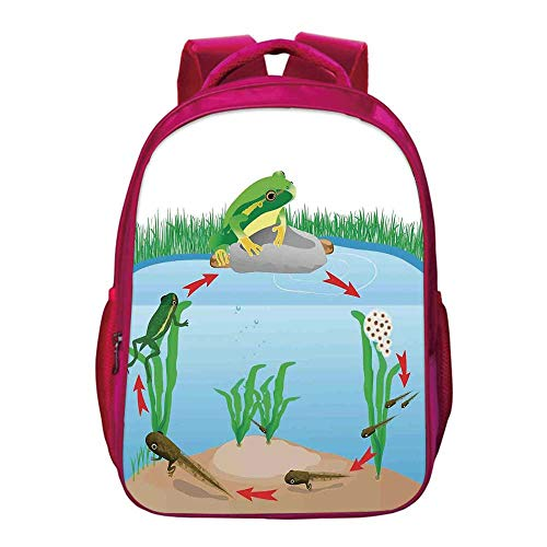 Sport Tree Frog Alpaca - Animal Decor Kids Bookbag,Life Cycle of Tropic Tree Frog Presents with Aquatic Elements Evolution in Nature for Kids Girls,11.8