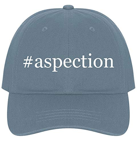 The Town Butler #Aspection - A Nice Comfortable Adjustable Hashtag Dad Hat Cap, Light Blue, One - Hummingbird Days Feeder Eighty