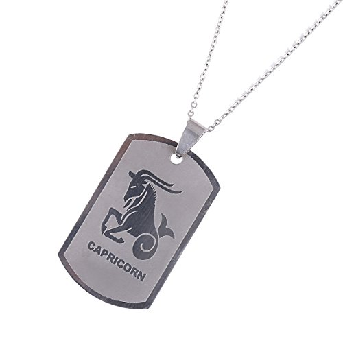 Zodiac Dog Tag (CB Gold Jewelry Zodiac Signs Necklace Best Friend Dog Tags Birthday Gift Stainless Steel Cancer Constellations (Capricorn))