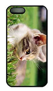 iPhone 5S Case - Customized Unique Design Lazy Kitten In Grass New Fashion PC Black Hard by icecream design