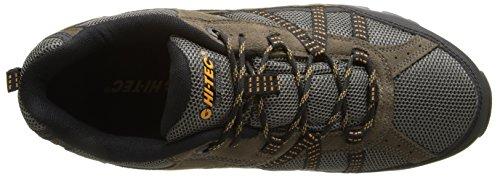 Shoe Men's Trail Waterproof Dark Gold Hi Low Taupe Cooper Tec wYxFnqfU