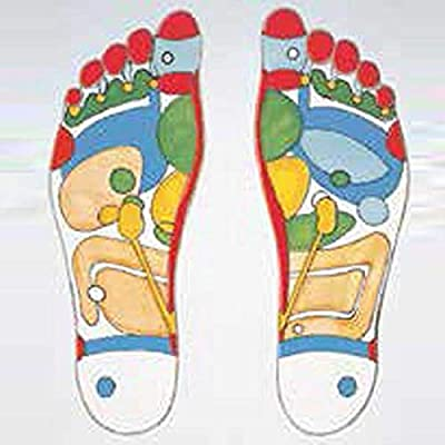 Dr Metz Slimming Insoles Medical Insoles Stimulate Trigger Point On The Soles Can Help Lead To Weight Loss For Men And Women Comfortable To Wear Easylife Lifestyle