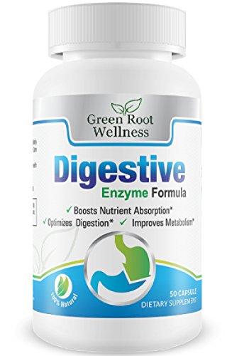 Enzymes digestives - un supplément de plantes naturelles - Prise en charge alimentaire Digestion, fonctions pancréatiques et l'absorption des nutriments - meilleure formule bien-être - Vert Racine bien-être - Rapport gratuit à la santé digestive Inclus -