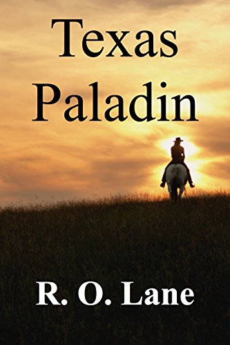 Texas Paladin cover