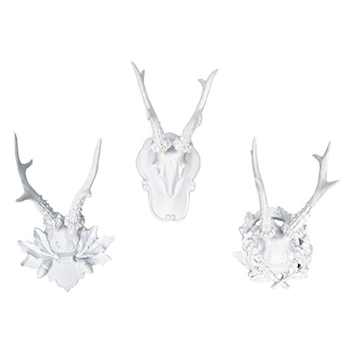 (Near and Deer Faux Taxidermy Collection of 3 Fancy Antlers Wall Mount, Small, White)