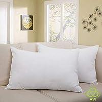 AVI Single Pillow Protector