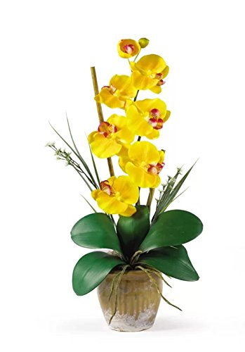 21' Phalaenopsis Orchid (Phalaenopsis Silk Orchid Flowers in Yellow, Artificial Flowers Decor)