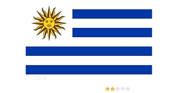 RUNFON 150 x 90 cm Uruguay Bandera Uruguay: Amazon.es: Deportes y aire libre