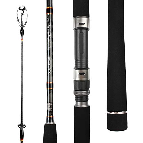 NOEBY NBRO-SBK5 Spinning Inshore Fishing Rod Ultra-Light 2 Piece Surf Fishing rods M & MH-Action Graphite Pole with Carbon Fiber Blanks for Bass (9'0