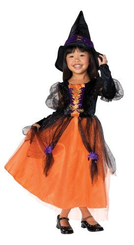 Little Princess Child's Pretty Witch Costume, Large