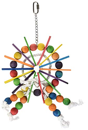 Prevue Pet Products 60957 Bodacious Bites Ferris Wheel Bird Toy, Multicolor